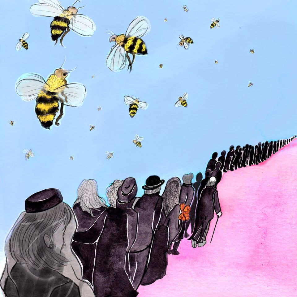 Funeral procession and bees